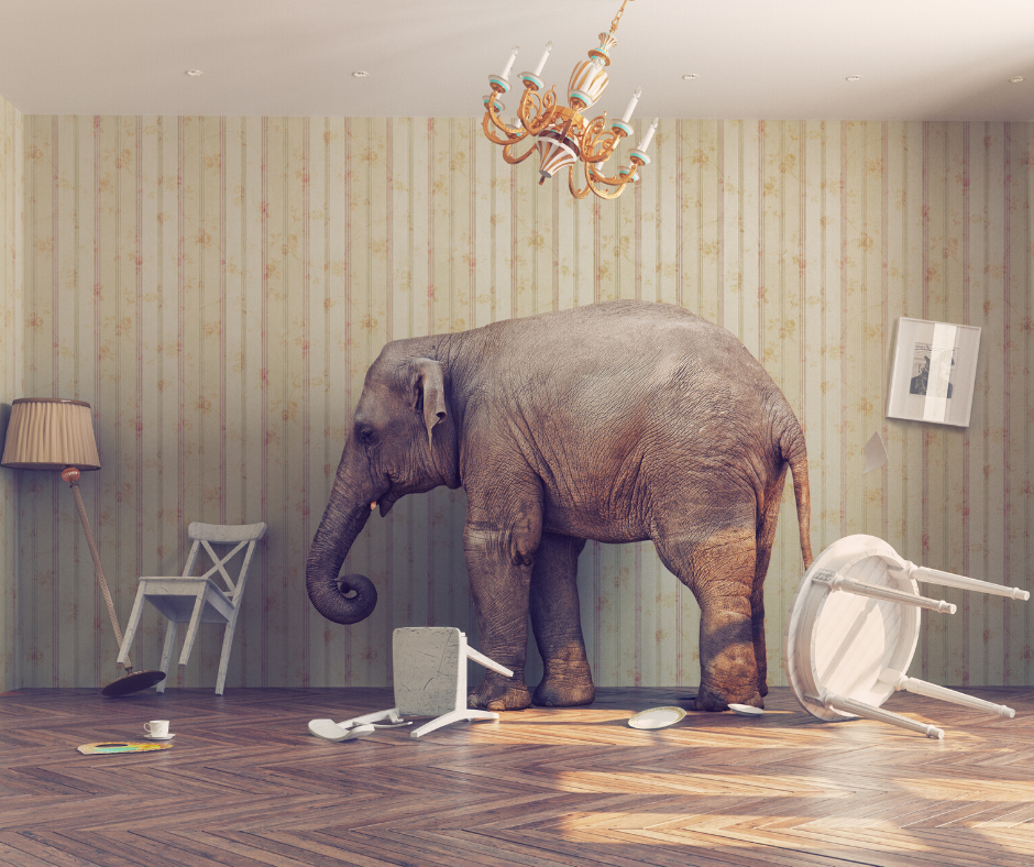 Circus Elephant In The Room